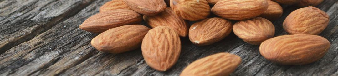 14 healthy snacks - our favorites for fighting cravings